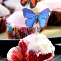 cupcake-682x1024
