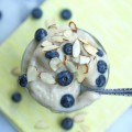 Frozen Banana Ice Cream Recipe