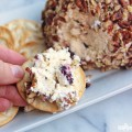 Cranberry Cheeseball Recipe