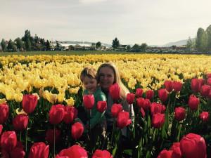 Tulips Mt Vernon Festival