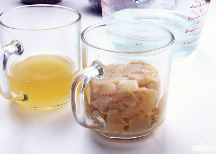 Learn how to create your own soap made with kombucha tea and the kombucha SCOBY in this tutorial.