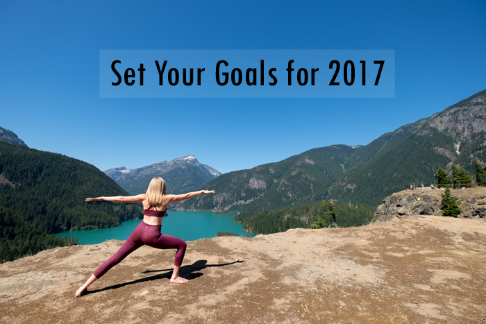 Set Your Goals for 2017