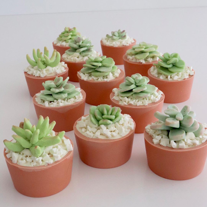 https://www.soapqueen.com/wp-content/uploads/2018/01/SoapishSucculents.jpg