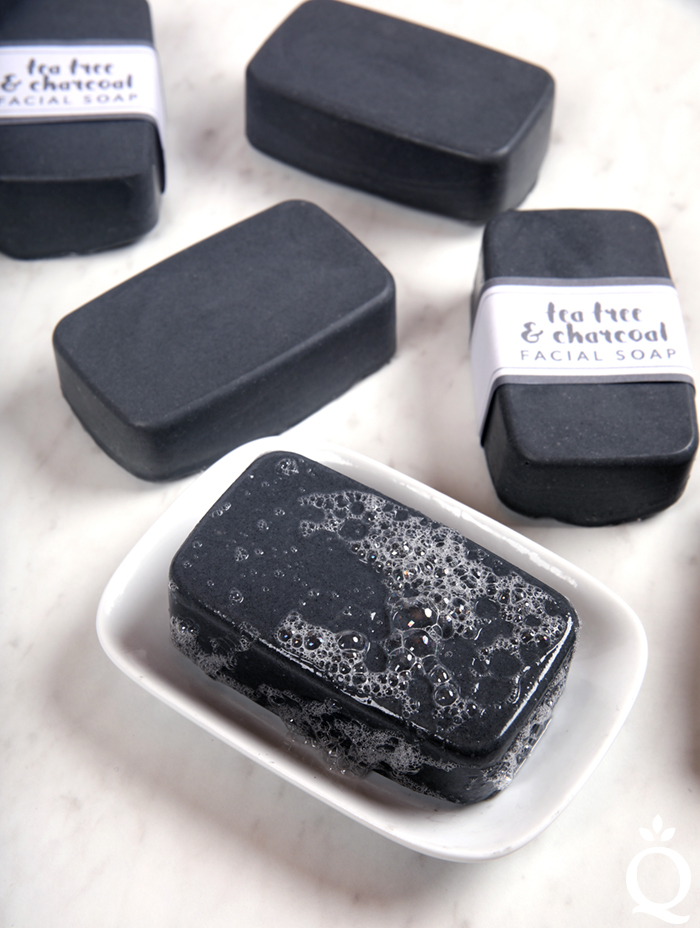 Charcoal Facial Soap Kit
