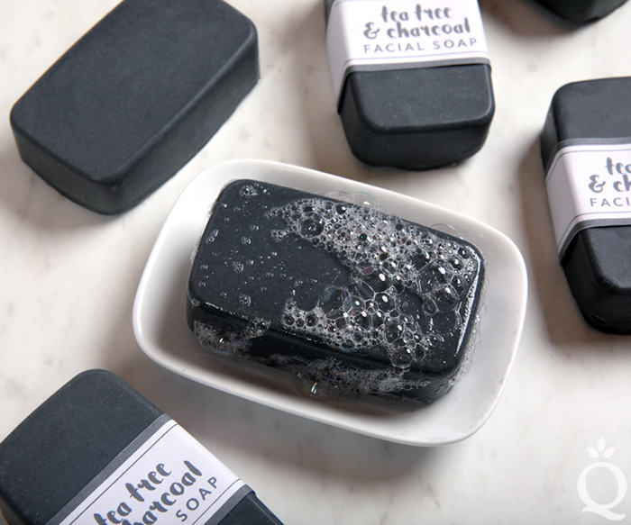 https://www.soapqueen.com/wp-content/uploads/2018/03/Charcoal-Facial-Soap-Kit.jpg