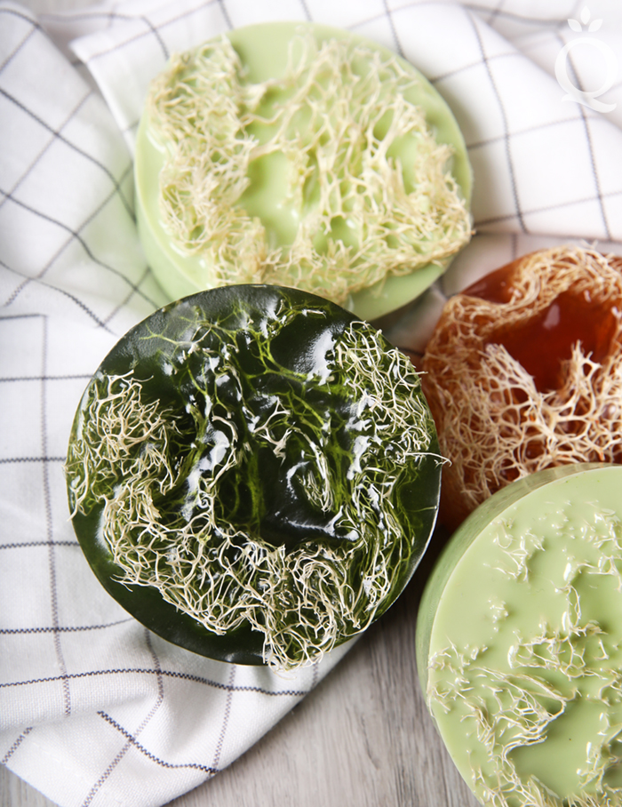 Garden Loofah Melt and Pour DIY
